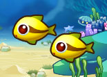 Aquarium de Poissons HTML5