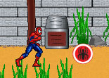 Spiderman Course