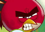 Angry Birds Endroits Cach�s